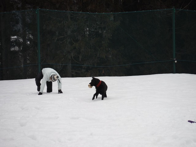 雪にズボツ