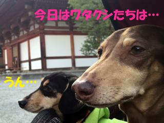 2014112303.jpg
