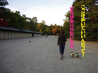 2014112308.jpg