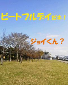 2014121401.jpg