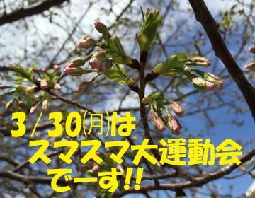 2015032401.jpg