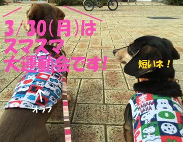 2015032502.jpg