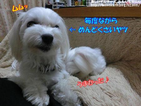 20140502_12.jpg