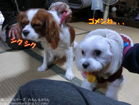 20150103_3.jpg