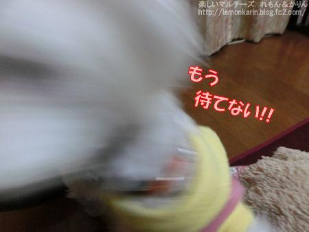 20150306_4.jpg