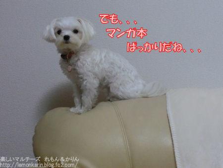 20150314_6.jpg