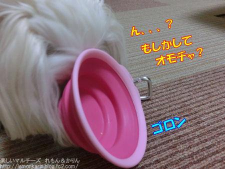 20150325_7.jpg