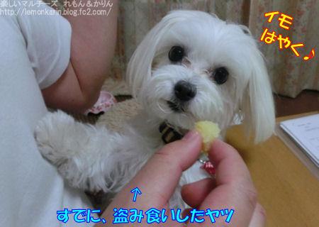 20150328_5.jpg