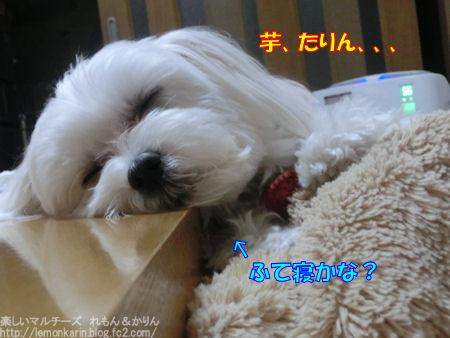 20150328_9.jpg