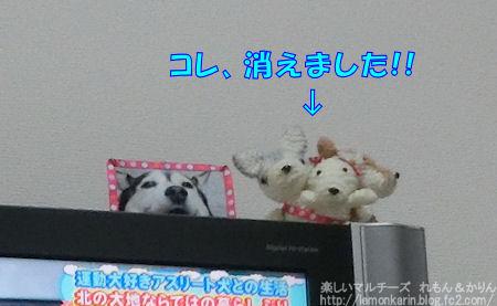 20150414_3.jpg