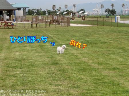 20150419_12.jpg