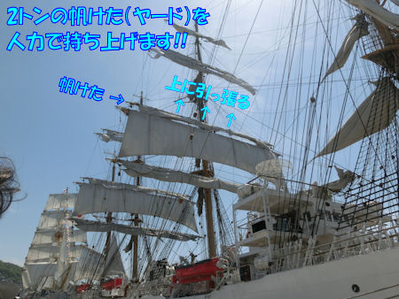 20150427_9.jpg