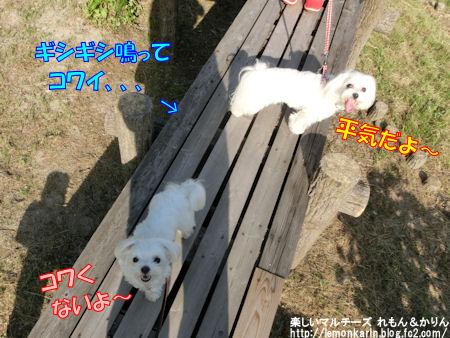 20150506_8.jpg