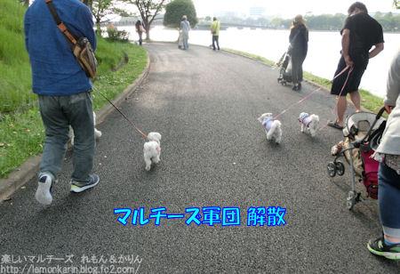 20150513_11.jpg