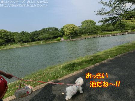 20150513_2.jpg