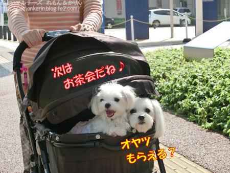 20150518_13.jpg