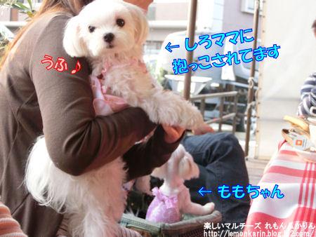20150519_05.jpg