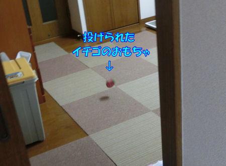 20150601_1.jpg
