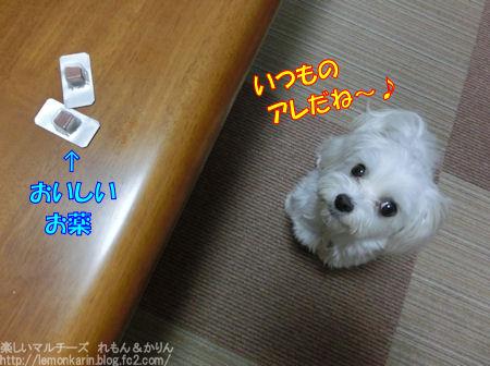 20150602_1.jpg