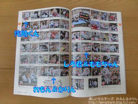 20150603_11.jpg