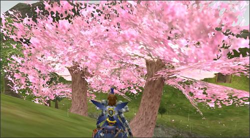150403_26桜