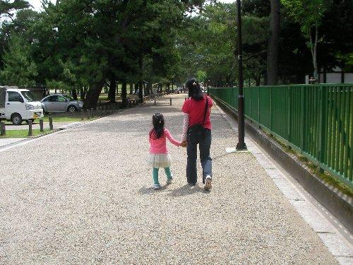 201506201036奈良公園2