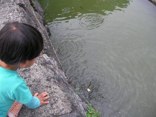 201506200949猿沢池②