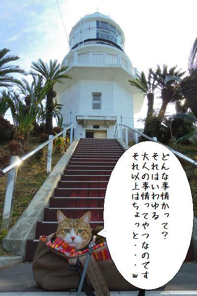 都井岬10