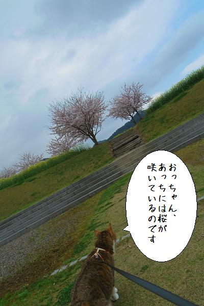 有田ポーセリンパーク9