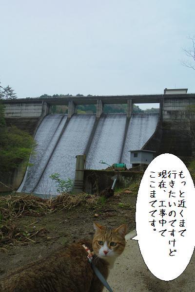 松木ダム5