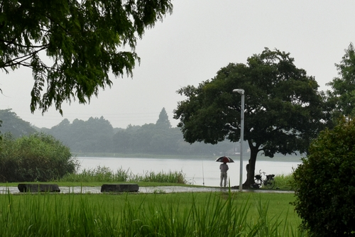 270706 下江津湖公園3
