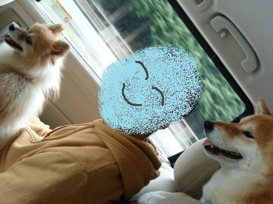 車の中で(笑)