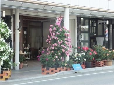バラの街2