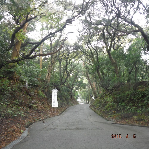 harumaturi-2015-7.jpg
