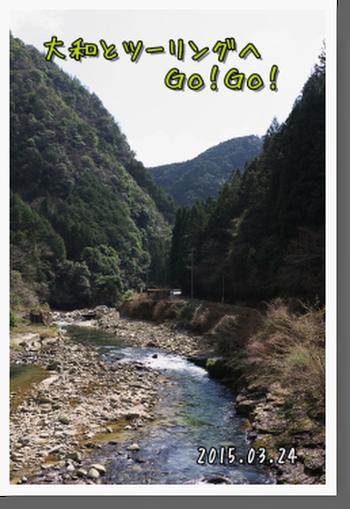 2015年3月24日 青山高原 (28)