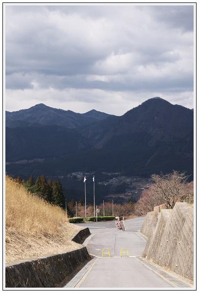 2015年3月24日 青山高原 (19)