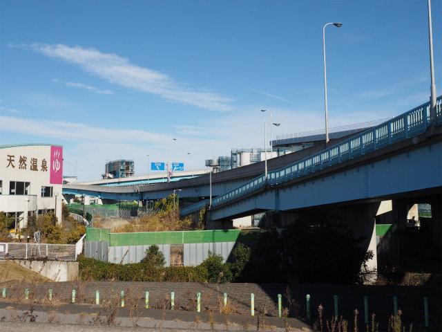 クリーンスパ市川の脇から。京成菅野駅まで撮影しながら歩いていきます。