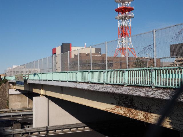 市川浦安線。下は京葉道路本線。