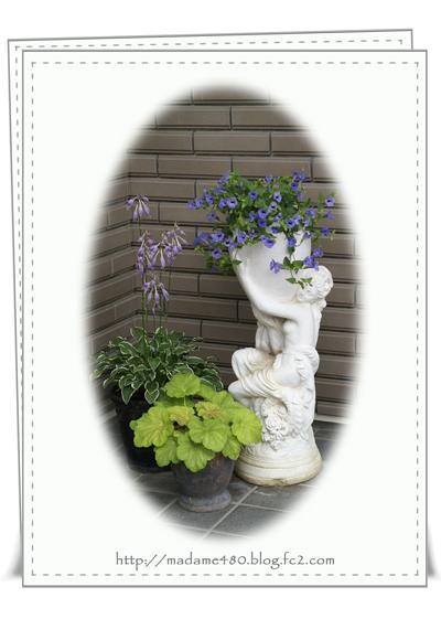 玄関の花web用