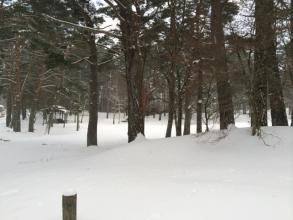 冬の松原湖高原キャンプ場