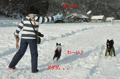 20141218w-wan06.jpg