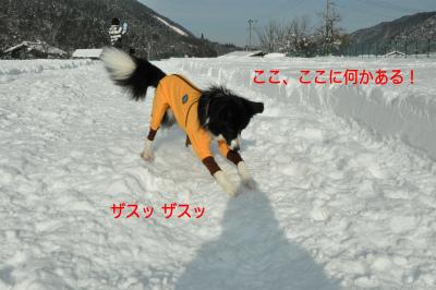 20141218w-wan08.jpg