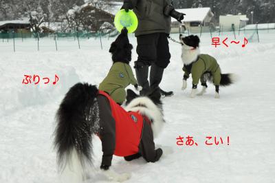 20141218w-wan12.jpg