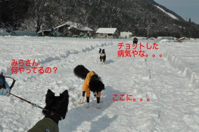 20141218w-wan9.jpg