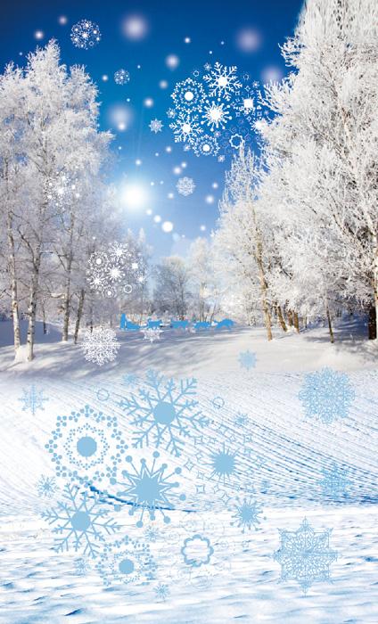 2015.2.14①雪