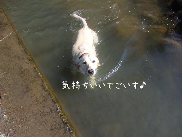 erioyogu.jpg