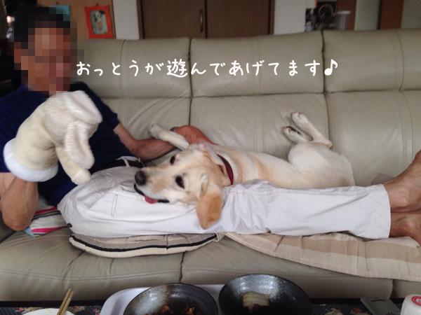 sofa1_201506262100308b4.jpg