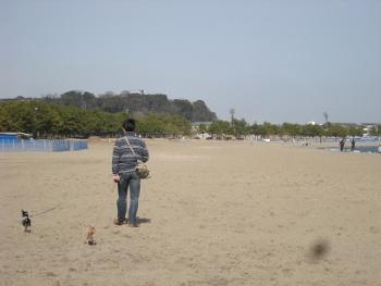 海の公園2月に1