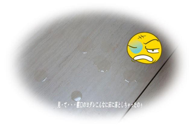 床に落とした