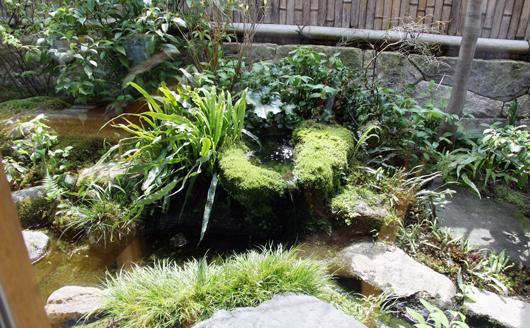 趣のあるお庭